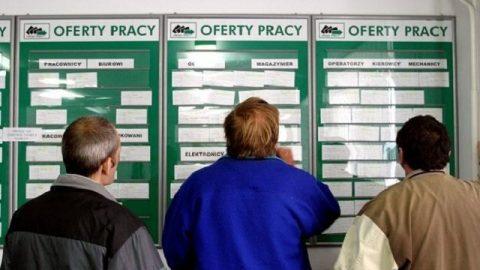 Складність польських процедур найчастіше гальмують працевлаштування іноземців