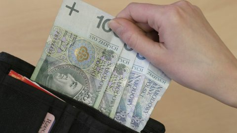 Рекордне зменшення українських грошей у Польщі