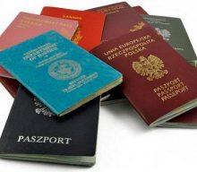 Влада готує законопроєкт про подвійне громадянство