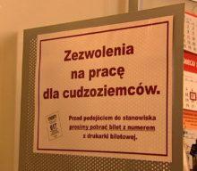 Бюро обслуги іноземців постане в Щецині. А поки, і там черги по дозвіл на працю