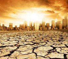 Польщі загрожує посуха
