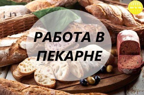 Работа в пекарне! Хлебобулочные изделия ( Торунь)
