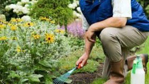 Садовник.