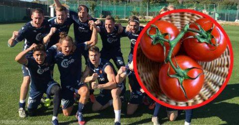Сезонних працівників з України та Польщі замінять футболісти? Норвезький фермер запросив на поле улюблену команду