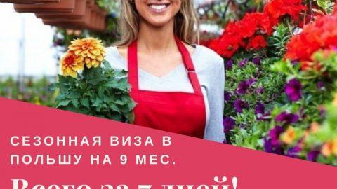 Приглашение для сезонной визы на 9 мес. за 7 дней