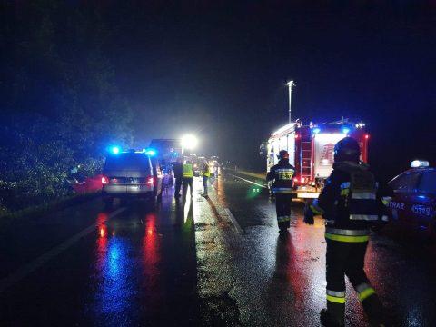 9 осіб загинуло у зіткненні мікроавтобуса  та автобуса на дорозі від Глівіц до Вроцлава