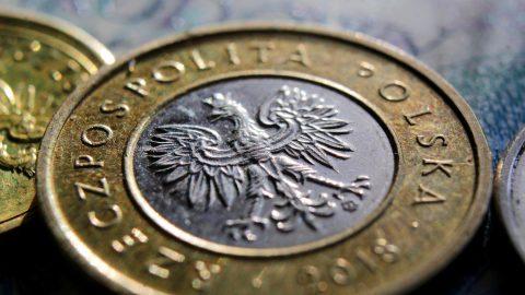 Інфляція в Польщі. 500 злотих – це насправді 454. Як зростають ціни?