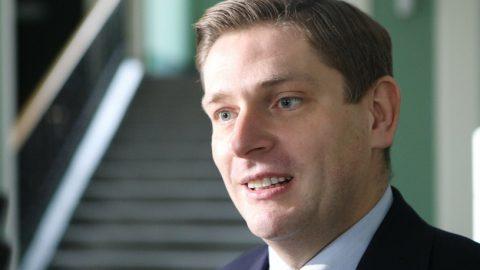 Депутат від правлячої партії «PiS» пропонує ввести плату за вхід у торгівельні центри