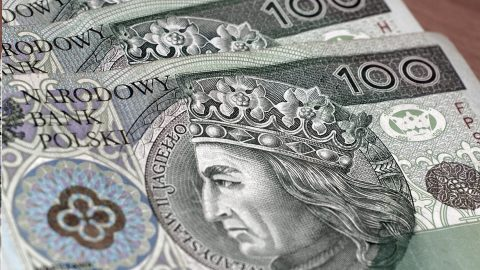 Найвищі та найнижче оплачувані галузі в Польщі у 2020 році. Чи потрапляють в цей рейтинг українці?