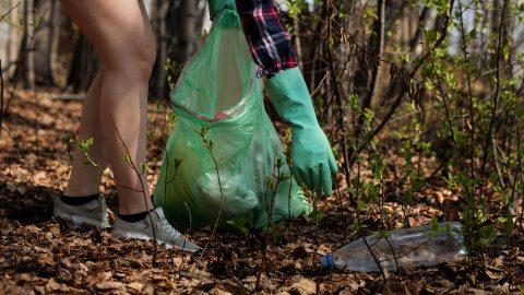 За сміття на пляжі, парку або лісі окрім штрафу правопорушники будуть прибирати.