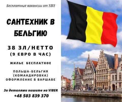 Сантехнік в Бельгію (відрядження Польша-Бельгія)